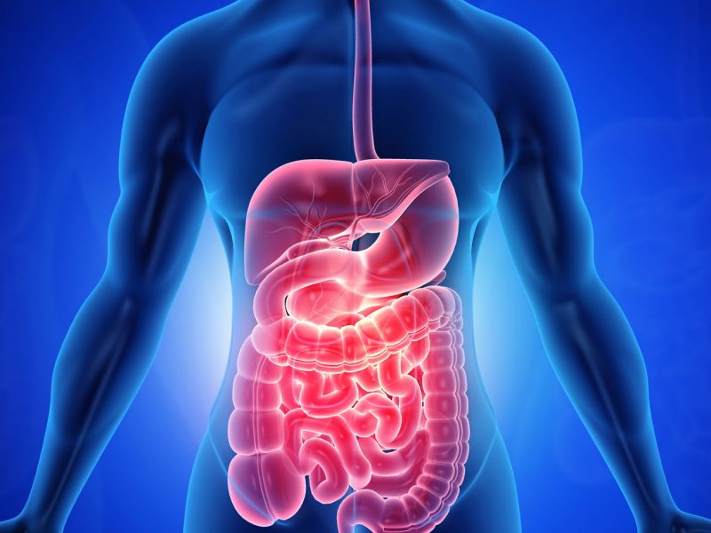 gastroenterology1